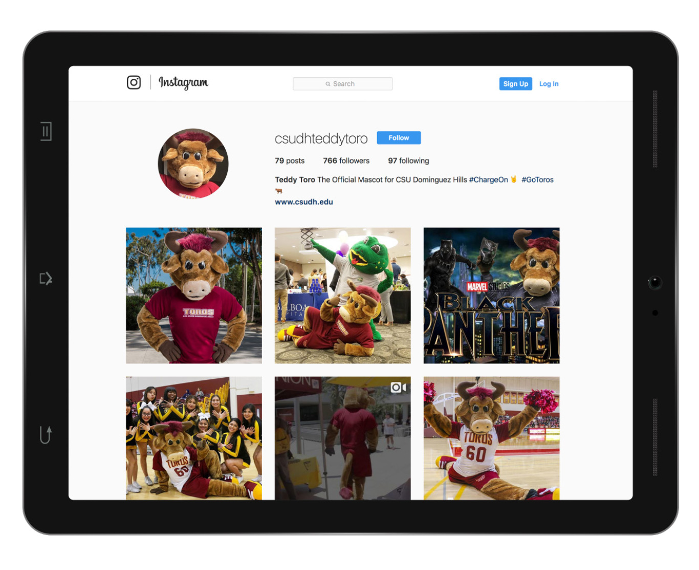 CSUDH Teddy the Toro Instagram page mockup on ipad