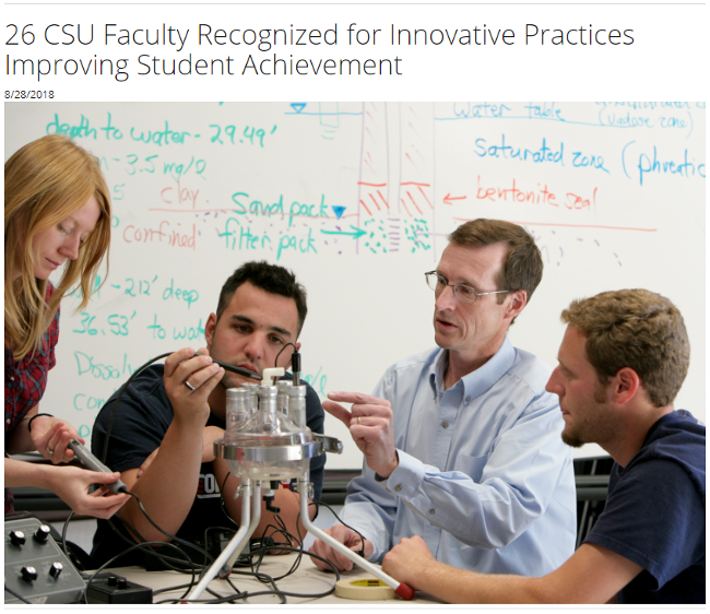Dr. Nancy Cheever awarded the 2018 Faculty Innovation and Leadership Award