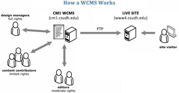 How a WCMS Works